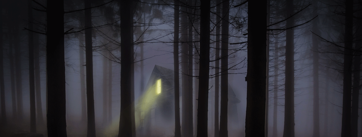 a cabin deep in the woods on a foggy night